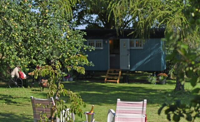 Suffolk Shepherd Hut - private orchard