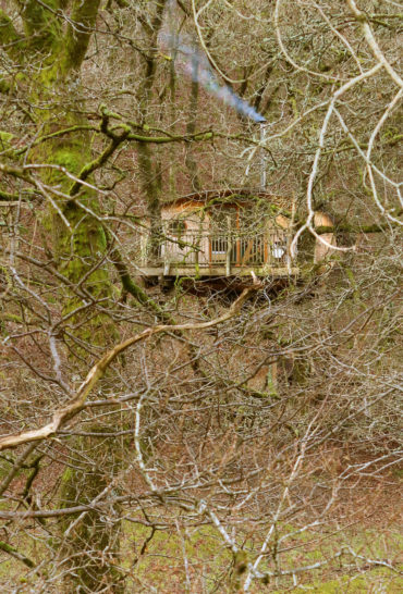 Snowdonia Treehouses - treehouse in woods