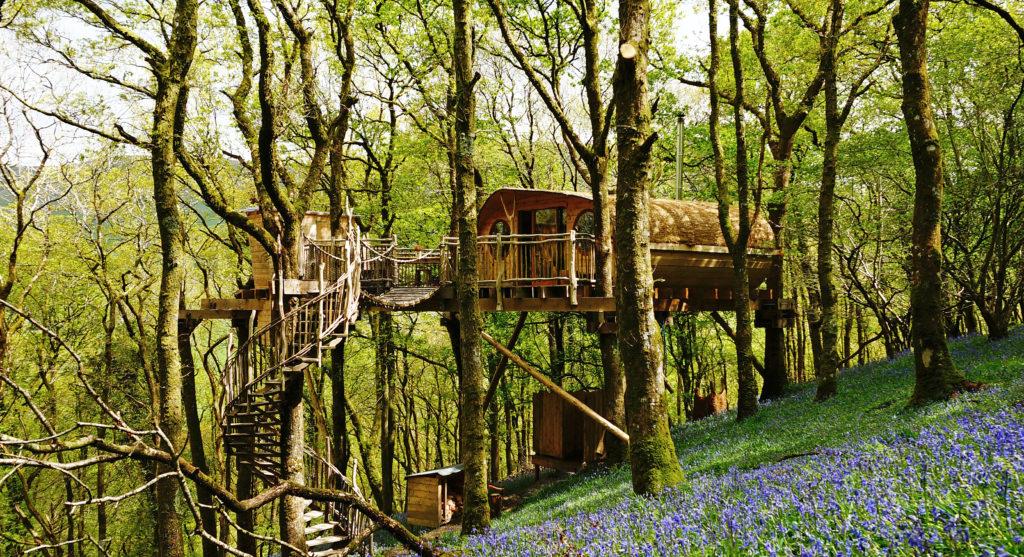 Snowdonia Treehouses