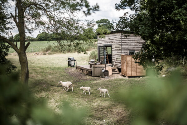 Epping Forest Cabin